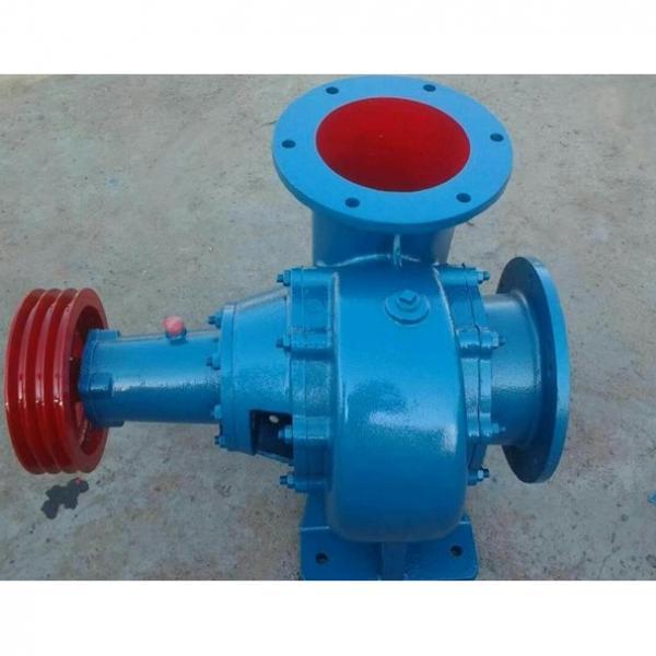Vickers PV032R1K1AYNUPG+PGP511B0110CA1 Piston Pump PV Series #2 image