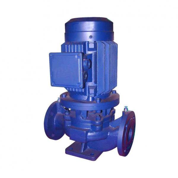 Vickers 4535V60A25 1DD22L Vane Pump #1 image